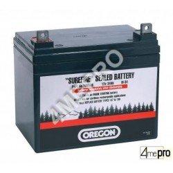 Batterie scellée SLA U1-34