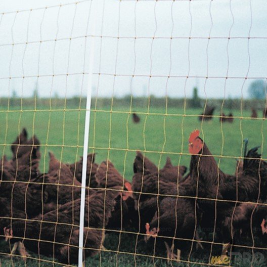 Filets pour volailles avec piquets - 105cm/50m Horizont