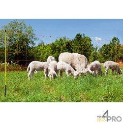 Filet à moutons avec piquets en fibre de verre OviNet pro