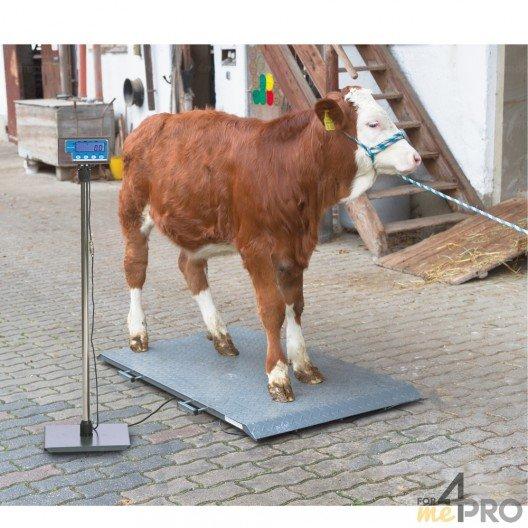 Balance pour animaux PS1000 / PS2000