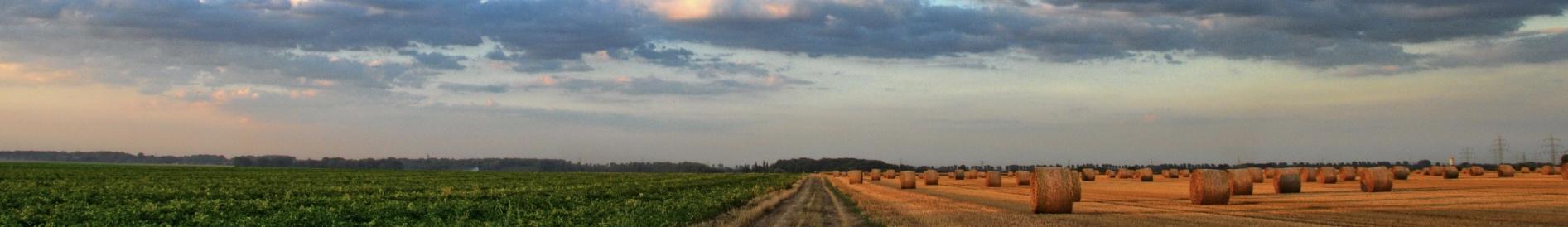 Boutique agricole