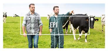 EPI agricole